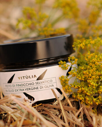 Vitùlia wild fennel pesto sauce